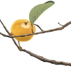 Pseudocydonia sinensis ,Small birds